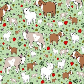 Goats on Green