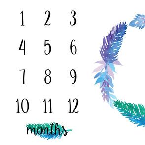 Milestone Blanket Blue & Purple Feathers