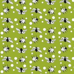 Ladybird polka dot green