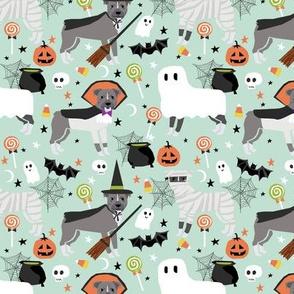 Pitbull halloween costume dog fabric vampire ghost mummy light