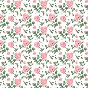bedford rosey princess