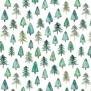 Evergreen Christmas Trees or Forest (smaller)
