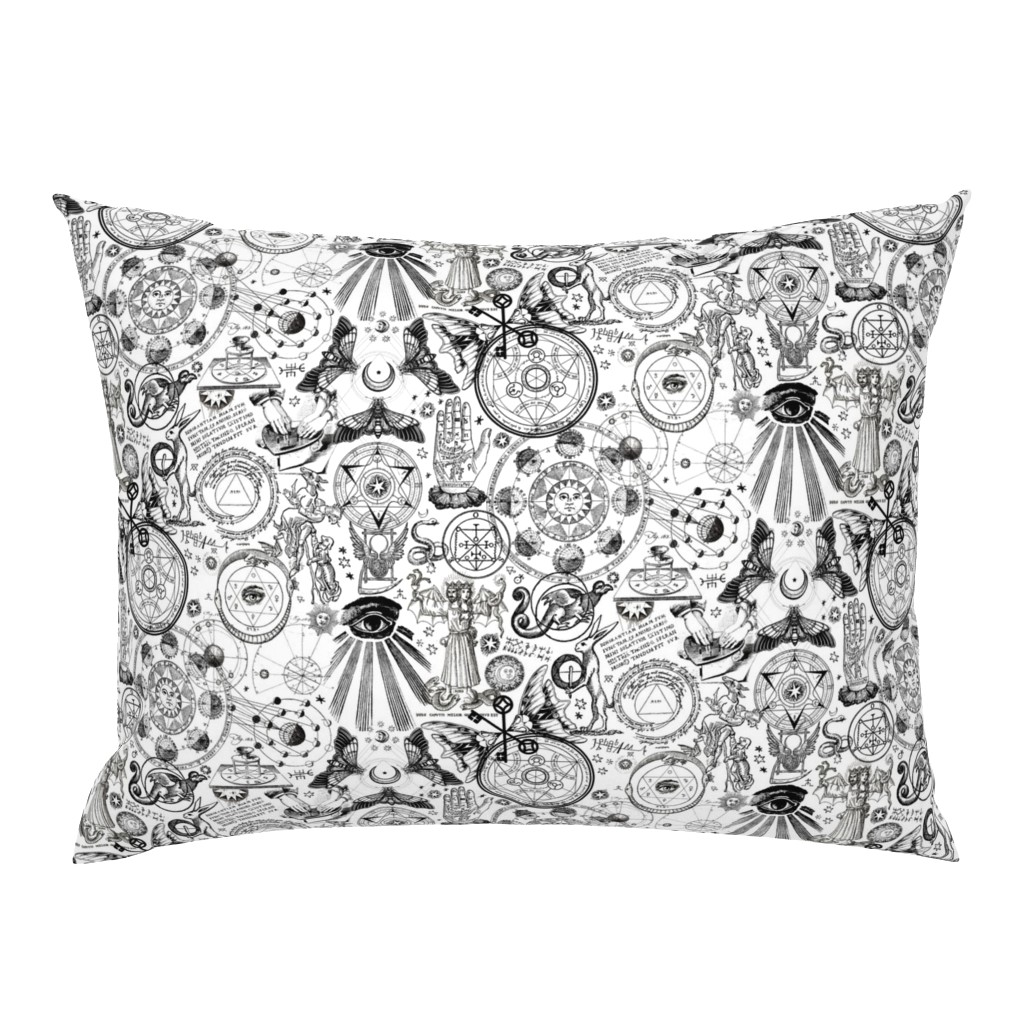 Campine Pillow Sham featuring Newsprint Mystic Occult by xoxotique