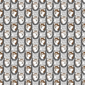Small Alaskan Klee Kai horseshoe portraits