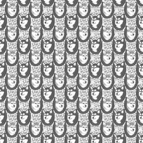 Small Alaskan Klee Kai horseshoe portraits B