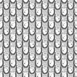 Small Alaskan Klee Kai horseshoe portraits C