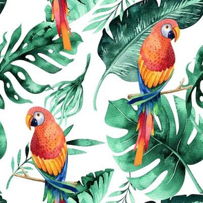 Tropical leaves  and parrots 7