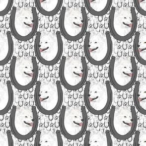 American Eskimo Dog horseshoe portraits