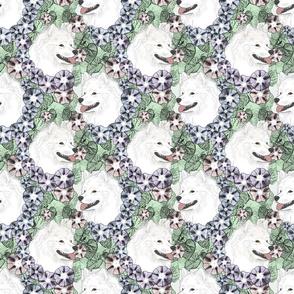 Floral American Eskimo Dog portraits