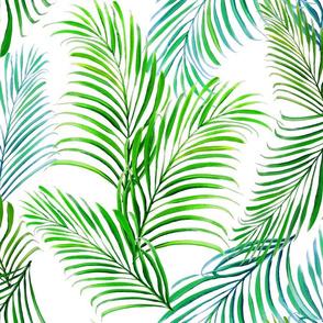 Breezy Palms on White 200