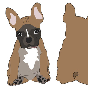 Leo the French Bulldog