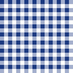 """Willow Ware Blue and White Gingham with Savoy Blue ~ 1"""""""
