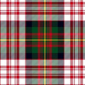 "Carnegie dress tartan, 6"" modern colors"