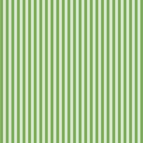 Green stripes on light green