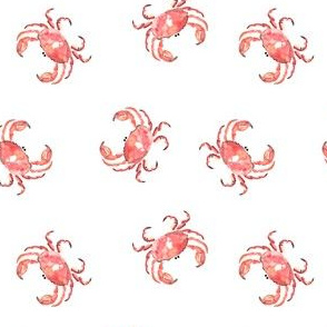 Crab Nautical Animal || Watercolor white  red orange water _ Miss Chiff Designs