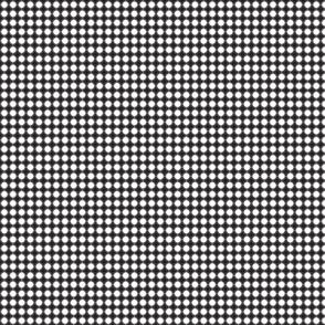 Grey Griddy