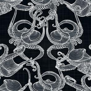 Cephalopod - Octopi White on Black