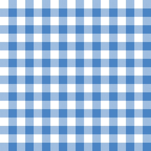 "1"" Marina Blue Gingham"
