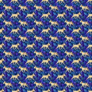 Cosmic trotting Toy Fox Terrier - night