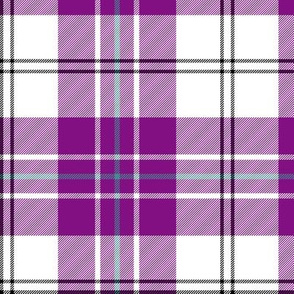 """MacPherson dress tartan, 6"""" purple"""