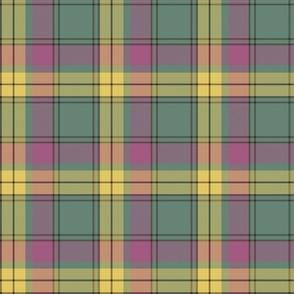 "MacMillan old tartan, 6"" faded"