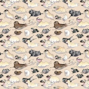 Pugs on the Move - taupe