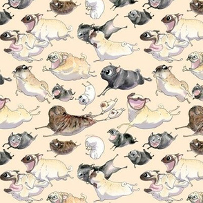 Pugs on the Move - oat