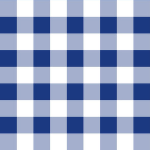 """Willow Ware Blue and White Gingham with Savoy Blue ~ 2"""""""