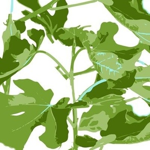 Fig, fig Leaf, leaf, fiddle leaf, print greens leaves large leaf