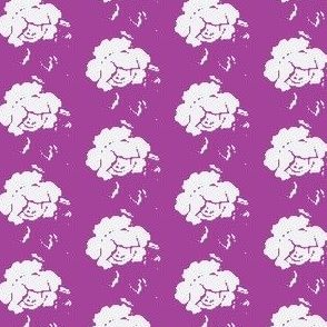 Rose berry lila