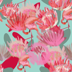 Flamingos and Proteas