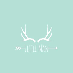 Little Man Antlers (8x8 quilt square) - on mint