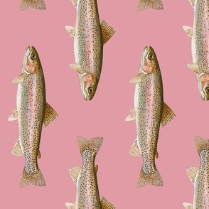 rainbow trout on rosebud pink - vertical