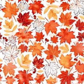 Autumn leaves against white