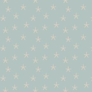 starfish...
