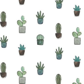 Blue Potted Cacti