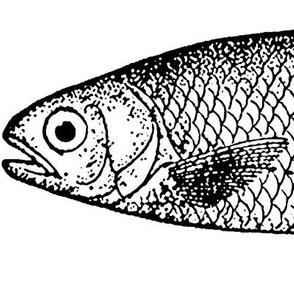 Color Me Tacky Fish