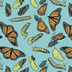 Monarch Butterflies and Caterpillars on Light Blue