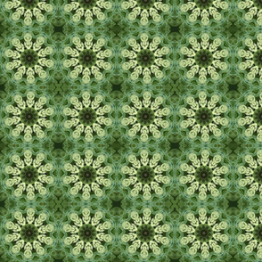 Green Sedum Snowflakes 2365