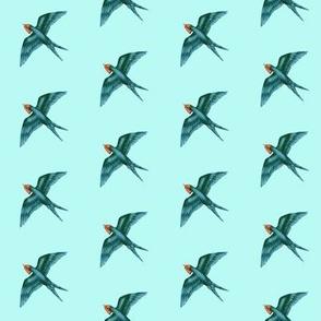 Swift Swallow Retro Aqua