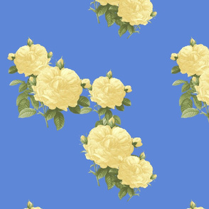 Redoute Roses ~ Pale Yellow on Retreat
