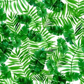 Tropical palm - monstera - green and white