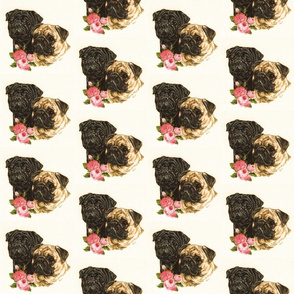 Pug dogs with flowers on cream background
