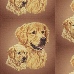 golden retriever dog with puppy