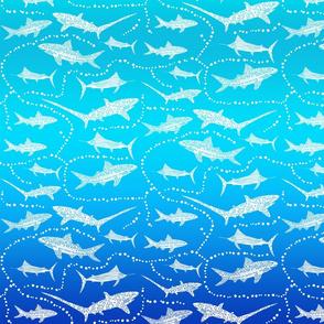Sea Dream - Aquamarine - Sea Sharks