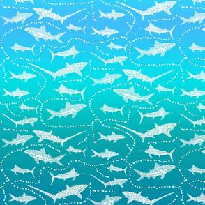 Sea Dream - Greenmarine - Sea Sharks