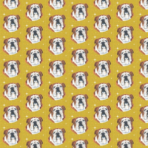 bulldog with stars and honeycomb