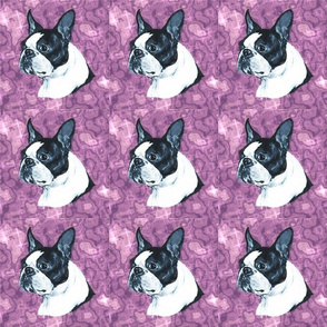 boston terrier dog head on purple marble with highlights