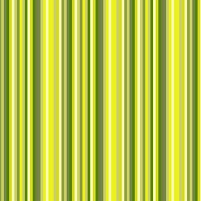 Avocdo Green Fruit Stripe || Chartreuse lime olive kelly forest