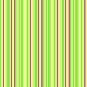 Lime Green Chartreuse Electric Pink Yellow Candy Stripe _ Miss Chiff Designs